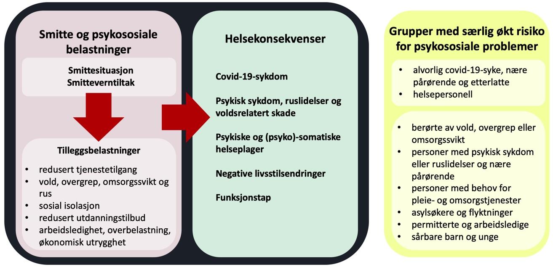 Figur som lister opp tilleggsbelastninger, helsekonsekvenser og særlig sårbare grupper ved pandemi.